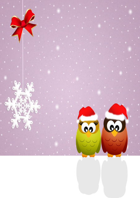 Robins with hats Christmas scene