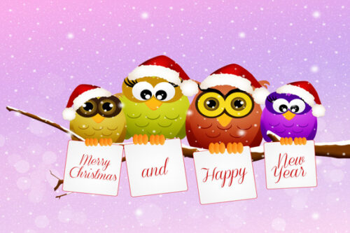 Merry Christmas and a Happy New Year with birds on branch