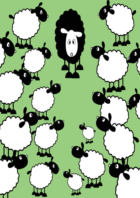 Black sheep with white sheep on green background