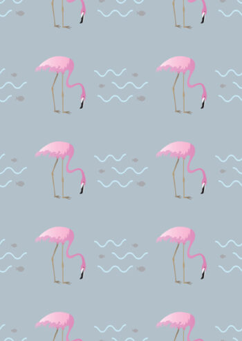 Pink flamingos with grey background