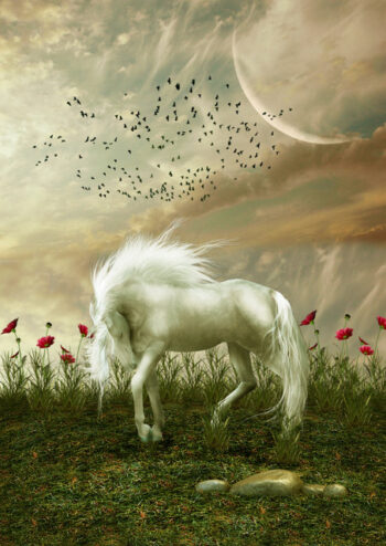 Pretty white horse with long mane