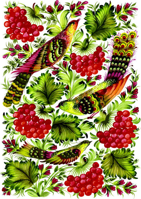 Colourful birds with grapes and leaves