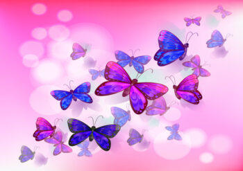 Purple and pink butterflies with pink background