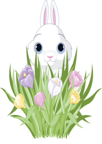 Easter bunny with crocuses
