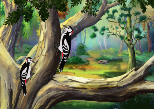 Woodpeckers perched on a tree trunk