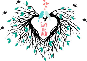 Save the date bird wedding announcement