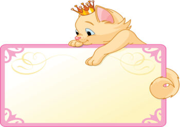 Princess kitten with white background