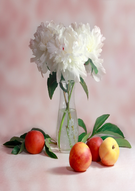 White flowers in vase surrounded by apples