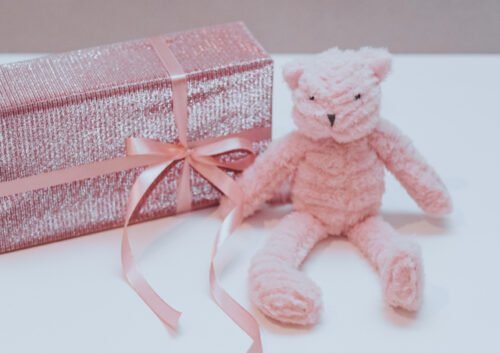Pink bear sitting next to a pink parcel with a pink ribbon