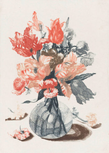 Red and grey flowers in vase